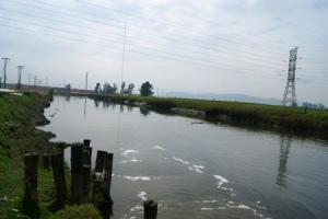 Inundación en Tierra Buena